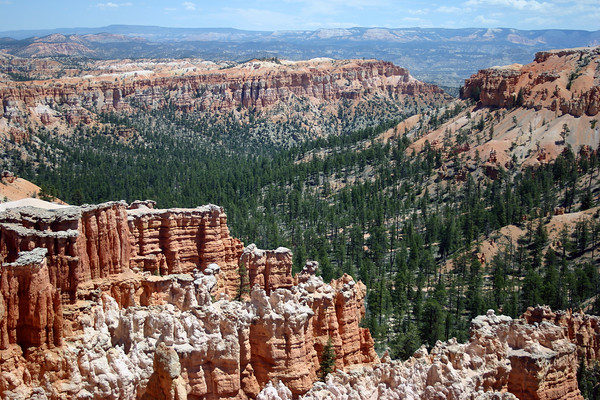 From the hoodoos - across the Ponderosa Pine, Douglas Fir, Pinyon Pine, and Utah Juniper - to the eastern end of Bristlecone Point - Bryce Canyon National Park - across Tropic Valley and East Valley - to the distal Aquarius Plateau, along the horizon