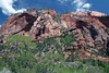Up the north slope of Burnt Mount - from along the La Verkin Creek Trail (towards Kolob Arch) - Zion National Park