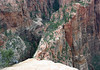 Beyond the juniper, near the summit of Angels Landing - viewing northward along the northern spine - with the Refrigerator Canyon (L), and Zion Canyon (R) - Zion National Park