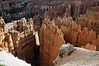 "Down the limestone cliffs of ""Wall Street"" - Bryce Canyon National Park"