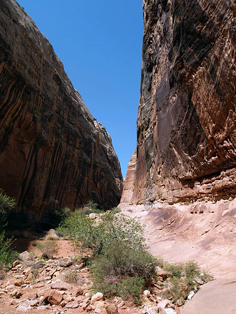 "Grand Wash - ""The Narrows"" - Capitol Reef National Park"