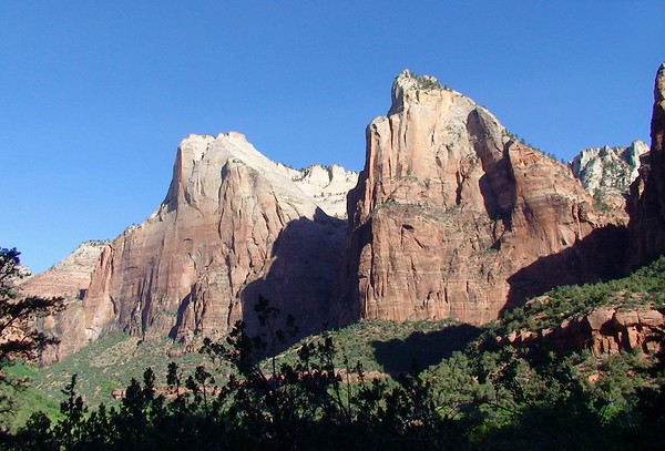 Abraham Peak, at 6,990 ft. (2,131 m) - Isaac Peak, rising to 6,825 ft. (2,080 m) - 2 of the 3 Patriarchs - beyond the shaded pine tree tops - Zion National Park