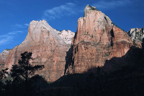 Morning sunlight on Abraham Peak and Isaac Peak - 2 of the 3 Patriarchs - beyond the shaded pine tree tops - Zion National Park