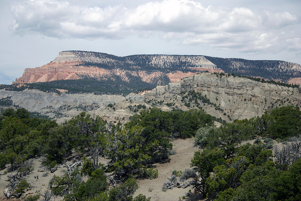 Across the Pinyon Pine and Junipers - along the South Rim - to Powell Point, the southern end of the Aquarius Plateau, rising to 10,188 ft. (3,105 m) - Grand Staircase Escalante National Monument