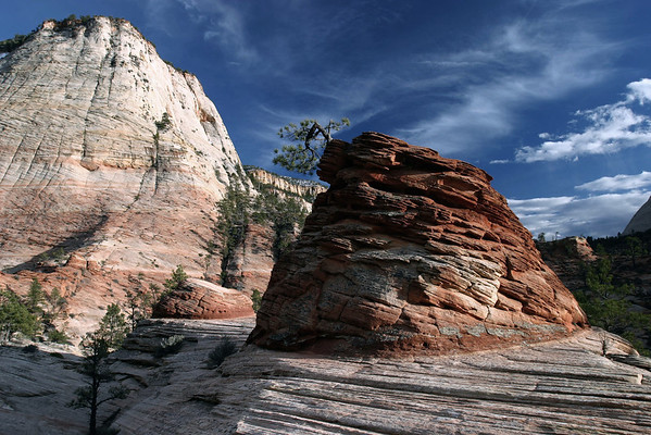 Late afternoon sunlight across the sandstone crossbedding of Zion National Park