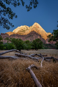 Zion Valley floor at sunrise