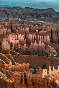 Hoodoos side lit by morning light