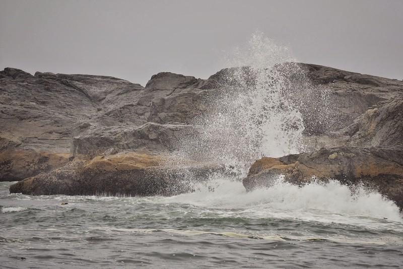 South Beach Waves