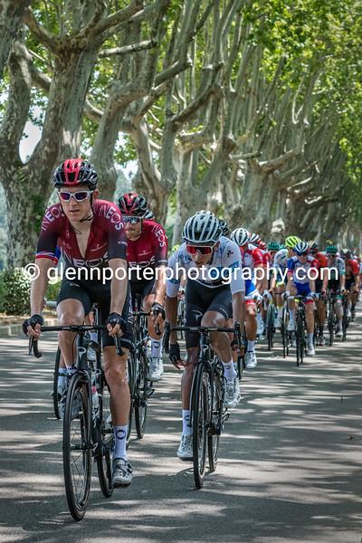 Geraint Thomas and Egan Bernal at 2019 Tour de France.