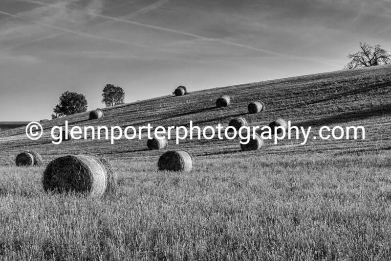 Morning hay bales at Valensole, Provence, France.