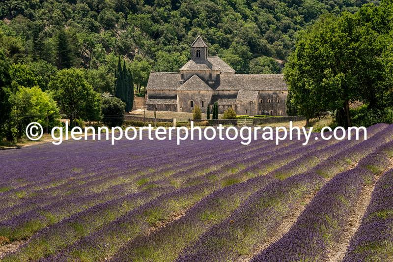 Senanque Abbey, Provence, France.
