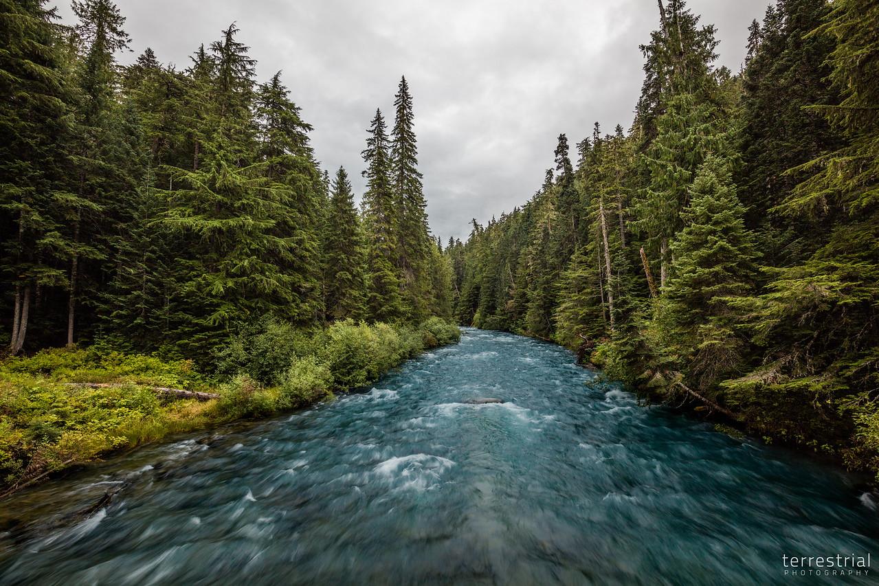 Cheakamus River