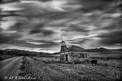 The Schoolhouse with the Cows