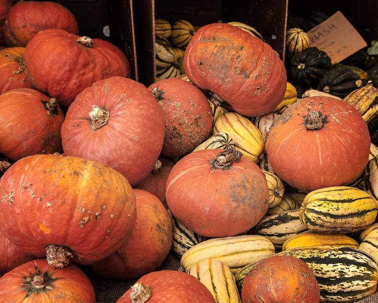 Closeup of a variety of winter squash at a farmers' market