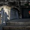 Venedig Karnaval 15 - 237