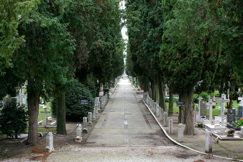 Avenue at St  Michele Cemetery