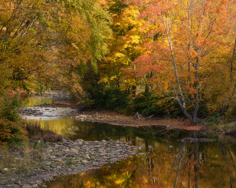 Meandering Colors