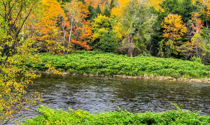 Vermont Mountain Stream