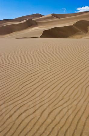 Colorado Sand Dunes 006 | Wall Art Resource