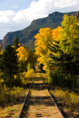 Colorado Fall Foliage 027 | Wall Art Resource