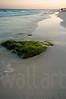 Sandy Beaches 026   Wall Art Resource