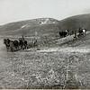 Зозулинці.  Soldaten beim Ackern in Zazulince.