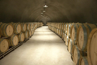 Wine barrels, Caves ,Halter Ranch vinyards