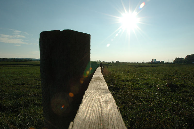 Cow Pastural Fence