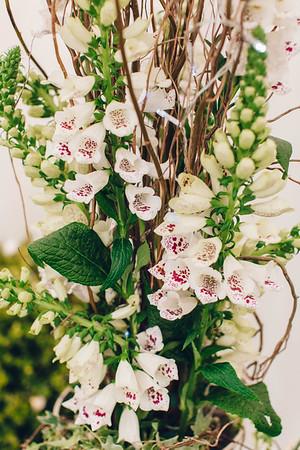 Lynn & Oisin Wedding-0022