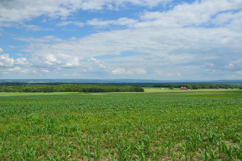Looking southeast across the Genesee Valley near Perry.  Nikon D5000 (June 2010).