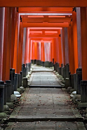 Torii Trail.  Fushimi Inari Shrine in Kyoto, Japan