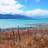 Turquoise Waters of Lake Pukaki
