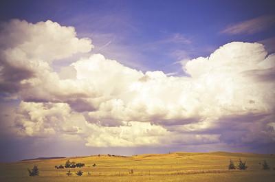 Big Sky Countryside