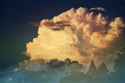 Thunderhead at Dawn