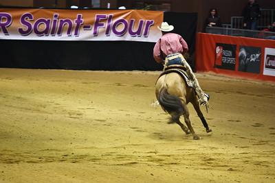 Buckskin Quarter Horse (Equita 2010)