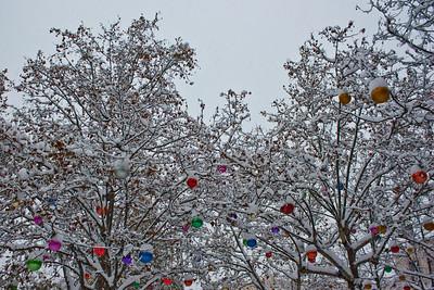 Lyon sous la neige - Place Ambroise Courtois