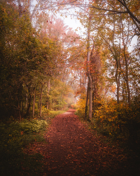 Path to Haven