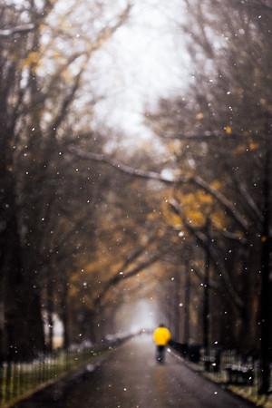 A Cold December