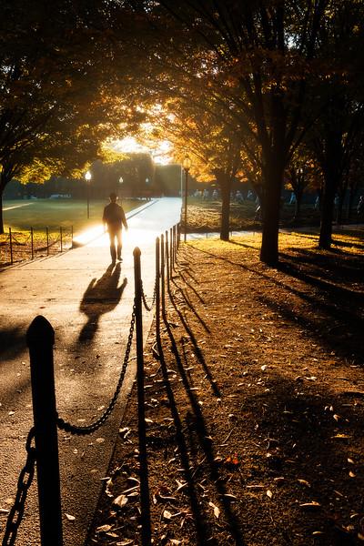 A Glimmering Shadow
