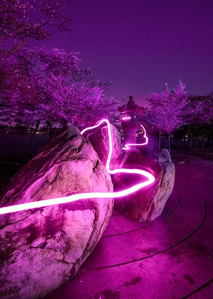 Lantern Life Force