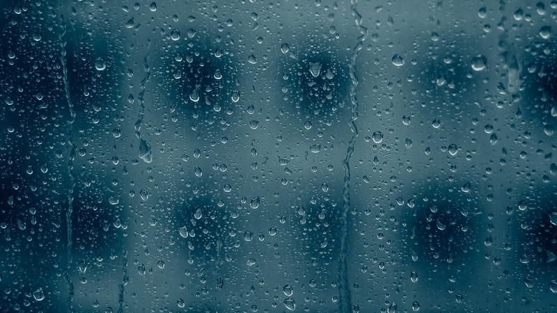 Rainlicker