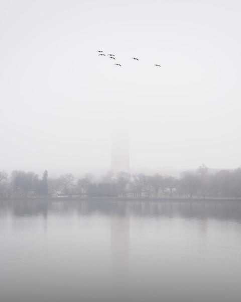 Flight Through the Fog