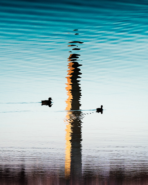 Tidal Illusions