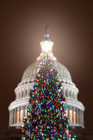 Christmas in the Capitol
