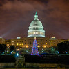 National Christmas Tree & the Capitol