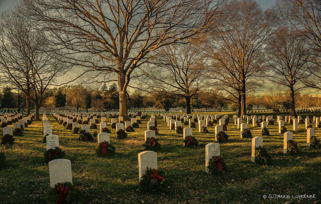 Arlington at Christmas