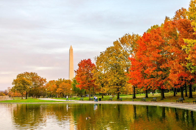 Autumn Colors on the National Mall