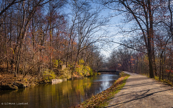 C&O Canal in Autumn
