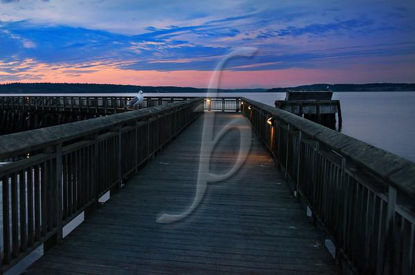 Dock Observer