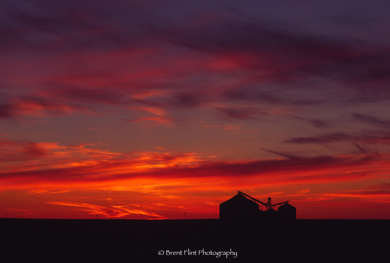 S.4074 - grain silo at sunset, Palouse Region, WA.